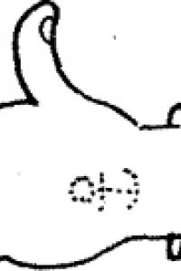 Осторожно HOT DOG! (с иллюстрациями)