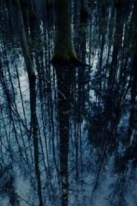 Северная Ведьма