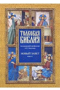 Толковая Библия. Новый завет. В 7 томах. Том 6. Четвероевангелие