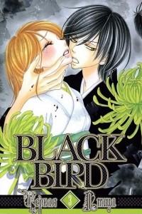 Черная птица. Том 3 [фанатский перевод]