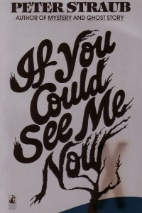 If You Could See Me Now