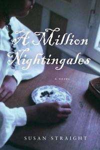 A Million Nightingales: A Novel