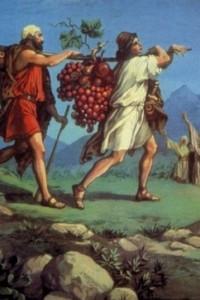 Пятая книга Моисеева. Второзаконие