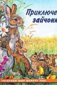 Приключения зайчонка
