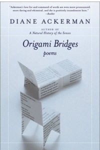 Origami Bridges : Poems of Psychoanalysis and Fire