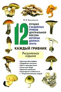 12 лучших съедобных грибов Центральной России, которые должен знать каждый грибник