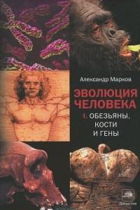 Эволюция человека. Обезьяны, кости и гены