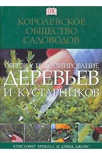 Обрезка и формирование деревьев и кустарников