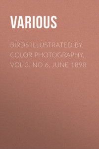 Birds Illustrated by Color Photography, Vol 3. No 6, June 1898