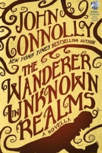 The Wanderer in Unknown Realms