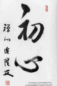 Сознание дзен, сознание начинающего
