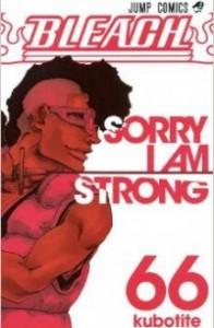 Bleach vol. 66. SORRY I AM STRONG