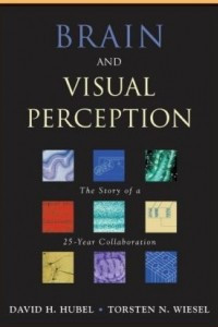 Brain and Visual Perception: The Story of a 25-Year Collaboration