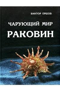 Чарующий мир раковин