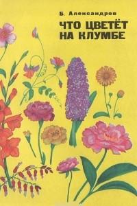 Что цветет на клумбе