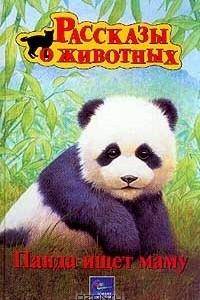 Панда ищет маму