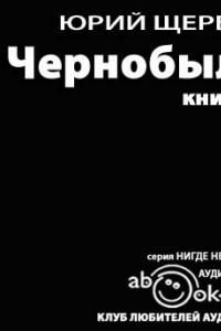 Чернобыль. Книга 2