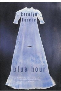 Blue Hour : Poems