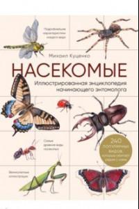 Насекомые. Иллюстрированная энциклопедия начинающего энтомолога. 240 популярных видов