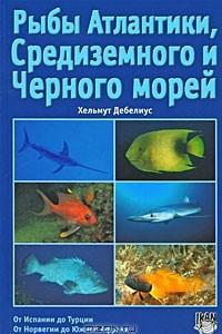 Рыбы Атлантики, Средиземного и Черного морей