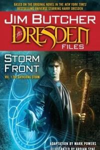 Jim Butcher's Dresden Files: Storm Front, Volume 1: The Gathering Storm