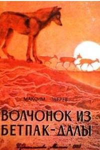 Волчонок из Бетпак-Далы
