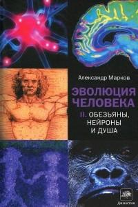 Эволюция человека. Обезьяны, нейроны и душа