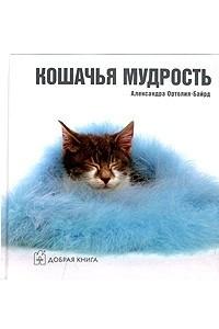 Кошачья мудрость