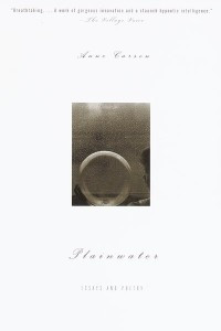 Plainwater: Essays and Poetry