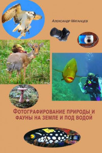 Фотографирование природы ифауны наземле ипод водой