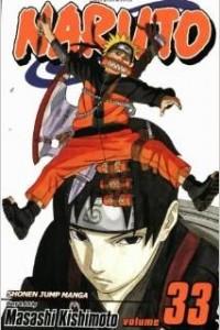 Naruto, Vol. 33: The Secret Mission