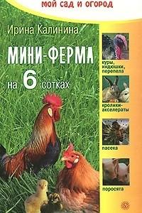 Мини-ферма на 6 сотках