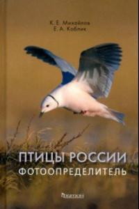 Птицы России. Фотоопределитель
