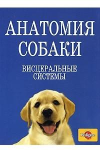 Анатомия собаки. Висцеральные системы