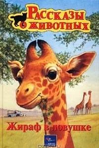 Жираф в ловушке