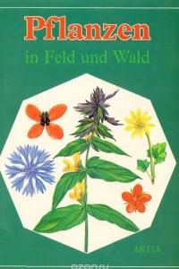 Pflanzen in Feld und Wald