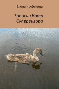 Записки Кота-Супервизора