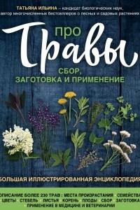 Про травы. Сбор, заготовка и применение