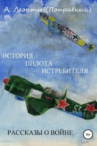 История пилота истребителя. Рассказы о войне