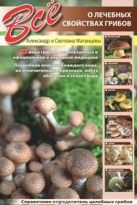 Все о лечебных свойствах грибов