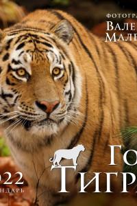 Год тигра. Фотографии Валерия Малеева. Календарь настенный на 2022 год (300х300 мм)