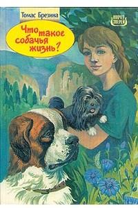 Что такое собачья жизнь?